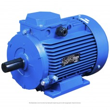Электродвигатель АДМ100S2 У2 220/380 IM1081 (4*3000) лапы