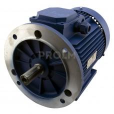 Электродвигатель АИР100L4-У2-220/380-50IМ2081-Р.К.В.К31Е-ААА IЕ1(4*1500) комб