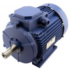 Электродвигатель АИР100L8/4-У2-220/380-50IМ1081-Р.К.В.К31Е-ААА (1,4/2,36*750/1500) лапы